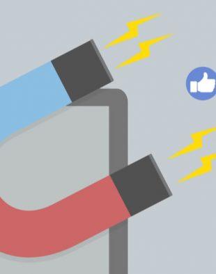 Employer Branding in social media