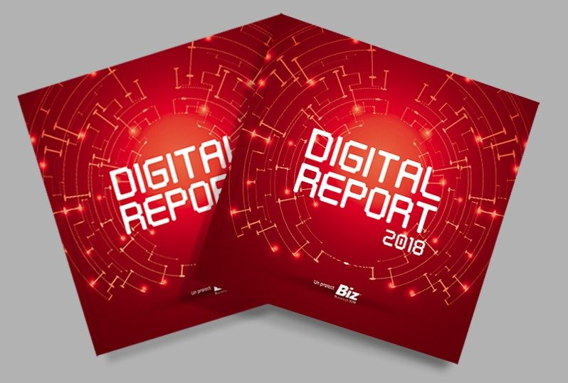 BIZ Digital Report 2018